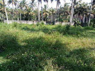 Trivandrum Pongummoodu Bapuji Nagar proerty 47cent