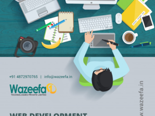 Build a professional website with Wazeefa1
