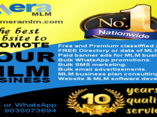 MLM PROMOTION