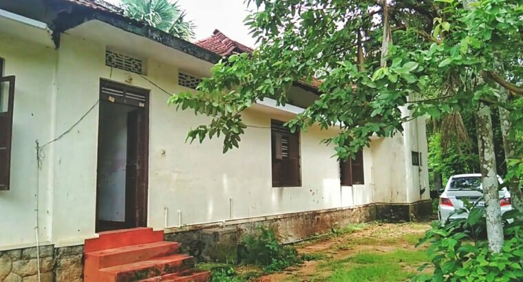 House and Plot for Sale