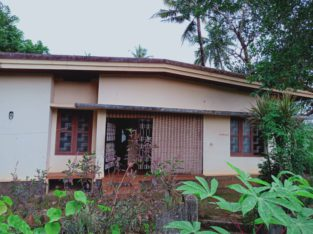 15cent land including house for sale in Adoor
