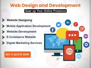 Best E-Commerce Website Design Company in Delhi