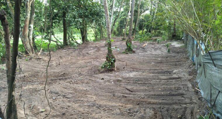 PLOT FOR SALE in Cherthala South, Kerala
