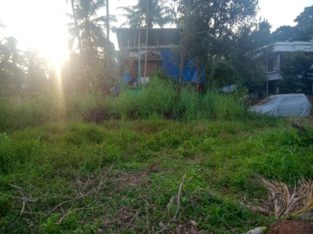 Plot for sale in thalassery