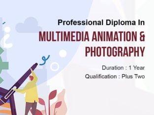Multimedia And Animation At Excellence