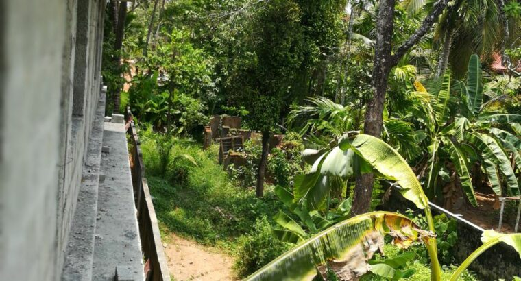 9.1 Cents plot is for sale in Irinjalakuda