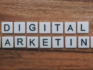 Best Digital Marketing Freelancer Palakkad, Kerala